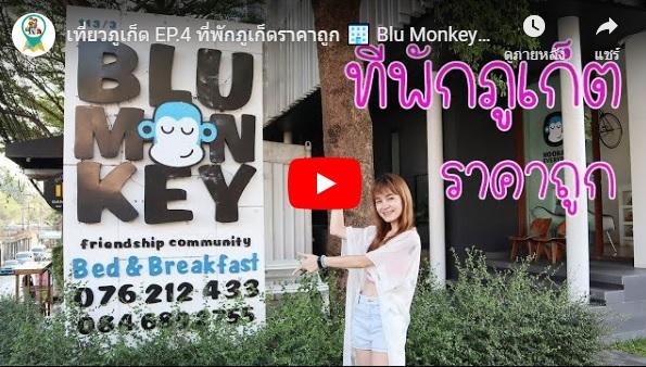 เที่ยวภูเก็ต ที่พักภูเก็ต 🏢 Blu monkey bed & breakfast  ราคาถูก น่ารัก ชิคๆ ใจกลางเมือง Phuket